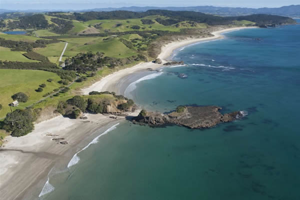 Tawharanui Regional Park (and open sanctuary) and the new marine reserve